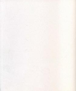 21010_Stucco Classico Carrara960_resize