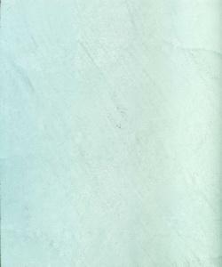 21024_Fresco Carrara Classico961_resize