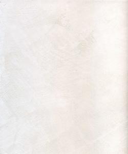 21402_Fresco Carrara Perlato968_resize