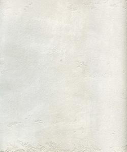 22401_Fresco Carrara Perlato967_resize